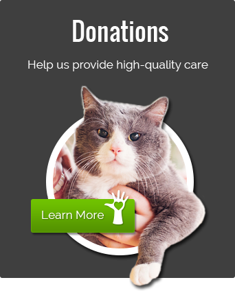Donations - Help provide high-quality care