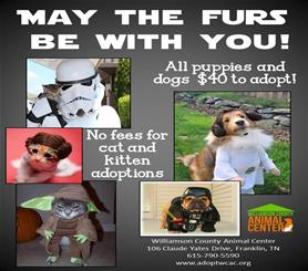 Mays the Furs be with yo